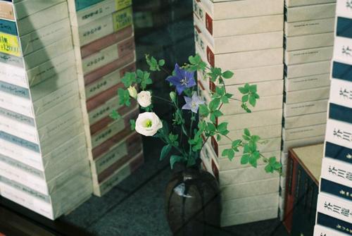 10042matsuura_tsugumi04.jpg