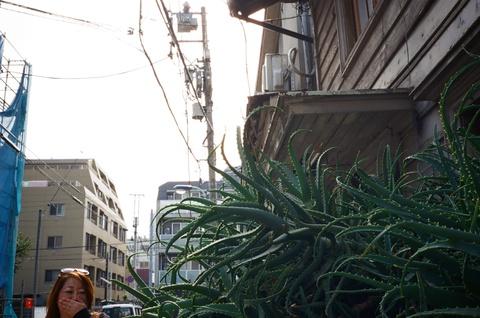 10506matsubara_etsuko050.JPG