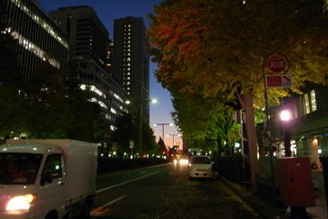takao21.jpg